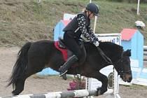 Jízdu na koních si můžete vyzkoušet pod hradem Humprecht