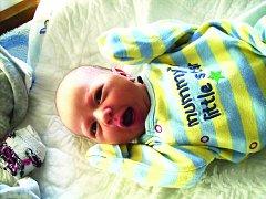 KATEŘINA  Linhartová se narodila Míle a Pavlovi z Holých Vrchů 24. ledna.  Její míry jsou 48 centimetrů a 2940 gramů. O sestru bude pomáhat pečovat bráška Pavel.