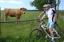 Marek Loskot viděl poprvé v životě živou krávu