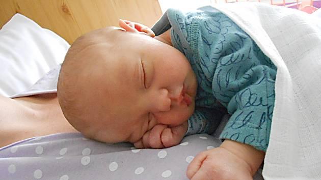 Filip Bitman, Petkovy. Narodil se 3. srpna, vážil 2,89 kg. Maminka Klára a tatínek Luboš.