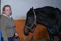Zraněná klisna Vindows se svou majitelkou Petrou Brodskou.