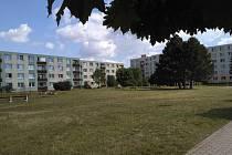 Pozemek u Radouče lidé rádi používají jako klidovou plochu