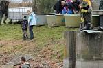 Výlov rybníka Vorlík v Dlouhé Lhotě.