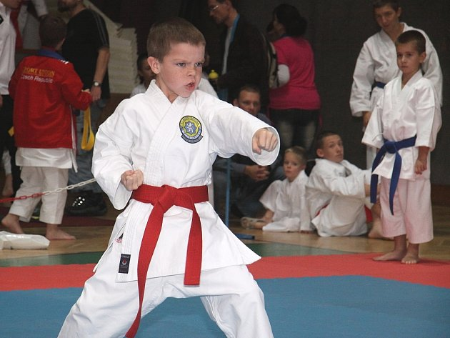 XIX.Vánoční cena Mladé Boleslavi v karate 2012