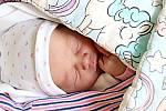 Rozálie Sajdlová se narodila 29. října 2019, vážila 3 kg a měřila 48 cm. S maminkou Kateřinou a tatínkem Honzou bude bydlet v Mladé Boleslavi, kde se na ni už těší bráškové Adam a Vojta.