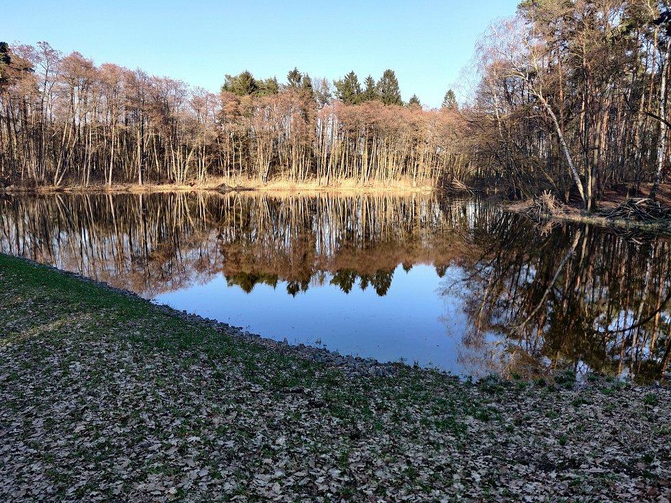 Vojenské lesy ČR obnovují na Mladoboleslavsku vodní plochy.