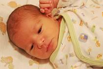 Vojtěch Lacina se narodil 24. listopadu 2018, vážil 3,6 kg a měřil 51 cm. S maminkou Veronikou, tatínkem Petrem a bratrem Štěpánkem bude bydlet v Benátkách nad Jizerou.