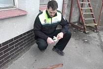 Had z Vančurovy ulice