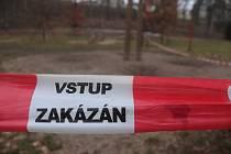 Mladá Boleslav v parku Štěpánka vysázela okrasné cibuloviny. Kvůli tomu bylo nutné dotčená místa obehnat páskou.