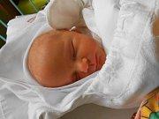 Filip Krejbich se narodil 8 listopadu. V době porodu byla známa pouze váha 2,95 kg. S maminkou Michaelou a tatínkem Tomášem bude bydlet v Mladé Boleslavi.