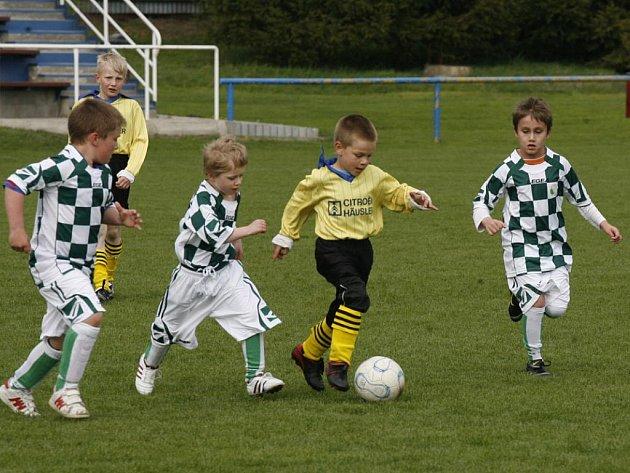 Přátelské utkání minižáků: FK Dobrovice - Sporting Mladá Boleslav