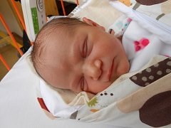 ANIČKA Šrajerová se narodila 15. února, vážila 3,3 kg a měřila 51 cm. S maminkou Anetou a tatínkem Václavem bude bydlet v Nové Telibi, kde už se na ni těší bráška Vašíček.