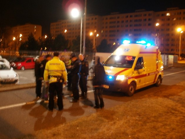 Ke rvačce v Palachově ulici musela přijet sanita.