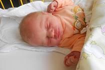 KLÁRA Holasová se narodila 20. října, vážila 3,04 kilogramů a měřila 48 centimetrů. S maminkou Zuzanou a tatínkem Jiřím bude bydlet v Hoškovicích u Mnichova Hradiště. Doma se na ni těší sestřička Lucie.
