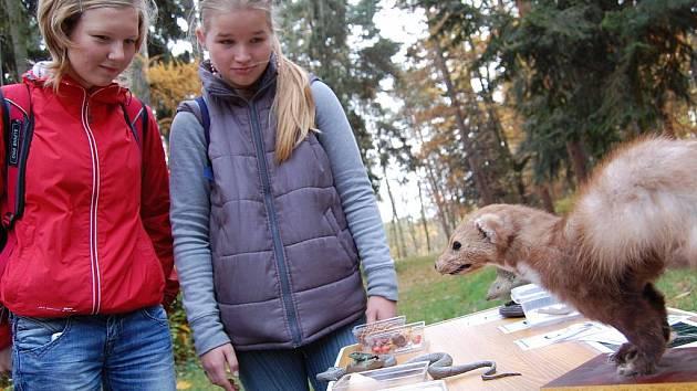 Školáci vyrazili na Štěpánku ukázat, co se naučili ve škole o přírodě.