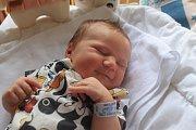 Terezka Adamcová se narodila první srpnový týden, vážila 3,89 kg a měřila 50 cm. Maminka Kristýna a tatínek Láďa si ji odvezou na Loučeň.