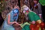 V Dolních Stakorách se v sobotu konala premiéra nové hry Anežčino přátelství, kterou nacvičil místní dětský divadelní soubor pod režijním vedením Ivany Muellerové.