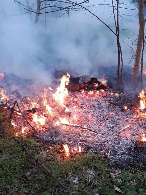 Požár lesa.
