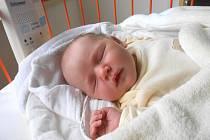 ADÉLKA Tomíčková se narodila 6. prosince, vážila 3,71 kg a měřila 53 cm. S maminkou Janou a tatínkem Petrem bude bydlet v Kosořicích, kde už se na ni těší sestřička Kačenka.