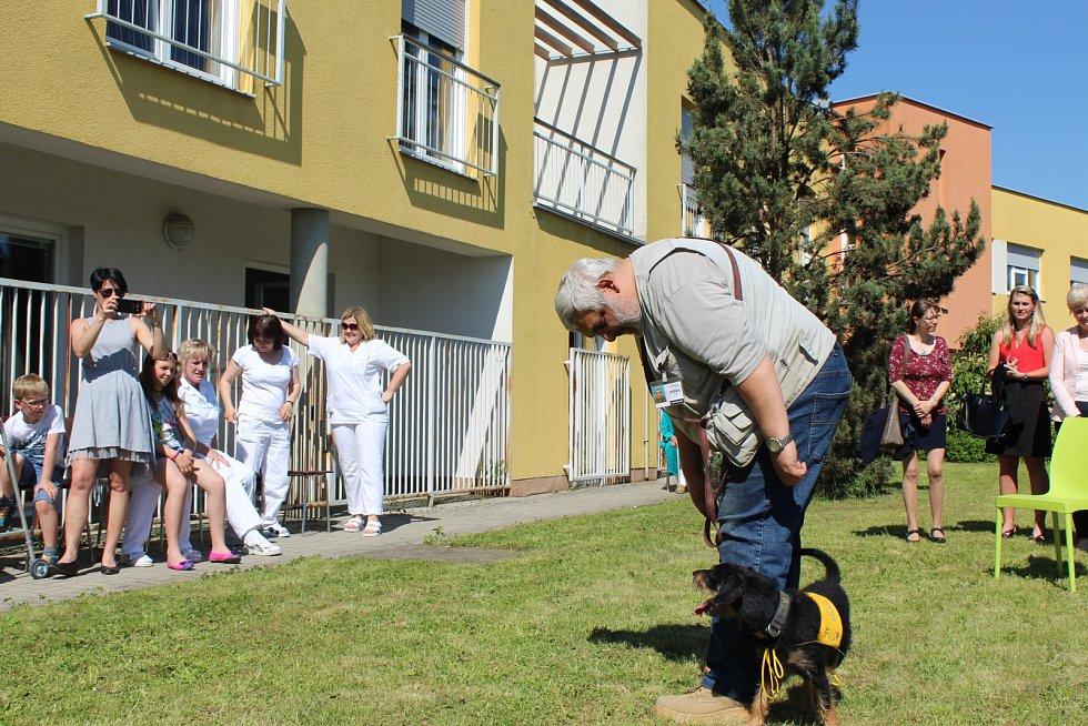 OBYVATELE LÉČEBNY dlouhodobě nemocných na Celně v Mladé Boleslavi ve čtvrtek odpoledne navštívila parta čtyřnohých kamarádů.