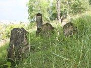 Mladoboleslavský židovský hřbitov je jedním z největších a nejstarších dochovaných v České republice.