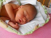 Amélie Mašínová se narodila 13. ledna, vážila 3,27 kg a měřila 50 cm. S maminkou Lucií a tatínkem Adamem bude bydlet v Mladé Boleslavi.