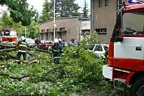 Hasiči dnes od rána likvidují popadané větve.