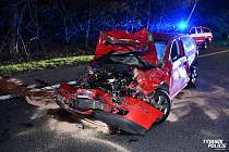 Na dálnici D10 došlo v pondělí večer k hromadné nehoda několika vozidel a stáda divokých prasat.