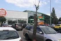 Stromy u Baumaxu