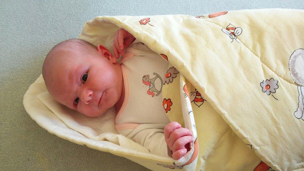 ELIŠKA Steinhauserová se narodila 27. října, vážila 3,57 kg a měřila 51 cm. S maminkou Janou a tatínkem Petrem bude bydlet v Mladé Boleslavi.