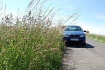 Přerostlá tráva u silnice často zasahuje až do jízdních pruhů.