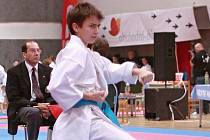 Vánoční cena v karate 2011