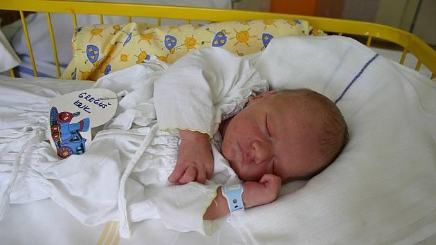 Erik Greguš (3,3 kg, 51 cm) se narodil 14. července rodičům Márii Gregušové a Frantiišku Bertelovi z Mladé Boleslavi.