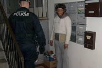 Zloděje chytili strážníci přímo při krádeži, díky pozornosti obyvatelky domu.