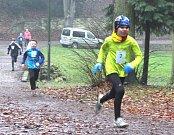 120 závodníků se vydalo vstříc několika tratím 34. ročníku Silvestrovského běhu v lesoparku Štěpánka v Mladé Boleslavi. Tu hlavní vyhrál Jiří Miler z domácího AC Mladá Boleslav