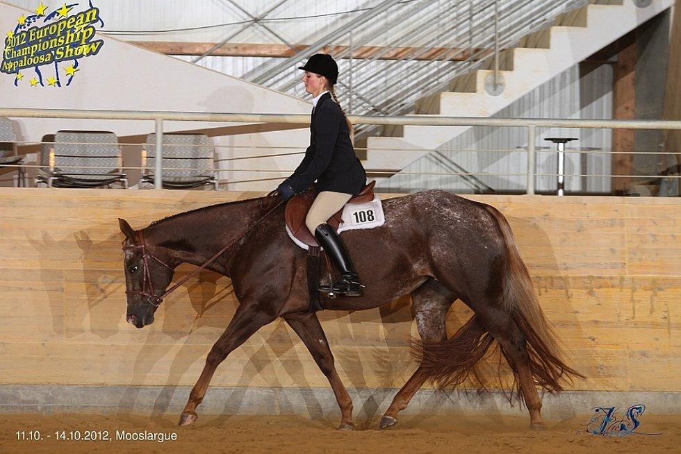 Drahomíra Košvancová z Mladé Boleslavi, jedna z organizátorek Mistrovství Evropy koní plemene appaloosa ve Zduchovicích u Příbrami.
