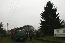 ZÁSTAVBA, ploty a dráty elektrického vedení. Kácet nebo nekácet?
