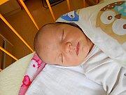 Hedvika Havlasová se narodila 20. října, vážila 3,64 kg a měřila 52 cm. S maminkou Hedvikou a tatínkem Janem bude bydlet v Mladé Boleslavi.