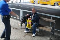 Bezdomovec utábořený na autobusovém nádraží v Mladé Boleslavi.