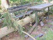 Polomy a vývraty v lesoparku Dolec