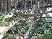 Zničené herní prvky v lesoparku Dolec