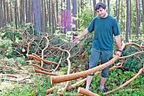 Radek Lípa z Lesů Bělá se zůstavšími větvemi borovice po nájezdu zlodějů
