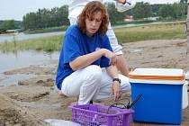 Vzorkařka Pavla Nehasilová při rozborech vody u Komárovského rybníka.