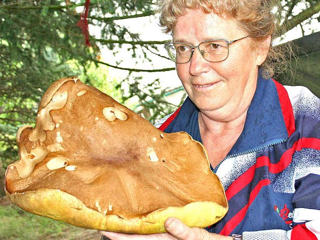 Jitka Bubnová pózuje novinářům se svým nálezem na chatě u Branžeže.