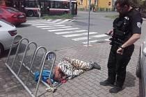 Strážníci měli v úterý v Mladé Boleslavi napilno