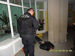 Strážníci zadrželi muže, který se vloupal do 9. základní školy.