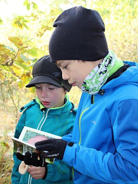 Mladí účastníci výpravy pomáhají surčováním hub.