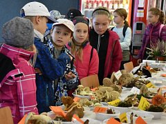 Na výstavu hub, která se uskutečnila v Kulturním Domě v Mladé Boleslavi, přišlo velké množství návštěvníků.