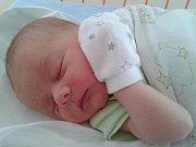 Honzík Tetřev se narodil 15. června, vážil 3,12 kg a měřil 50 cm. S maminkou Anetou, tatínkem Honzou a sestřičkou Nelinkou bude bydlet v Mnichově Hradišti.