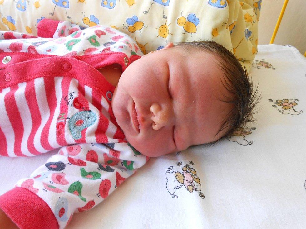 STELA Boboková se narodila 1. listopadu, vážila 4,45 kg a měřila 54 cm. S maminkou Lenkou a tatínkem Pavlem bude bydlet v obci Krpy, kde už se na ni těší bráška Tadeáš.